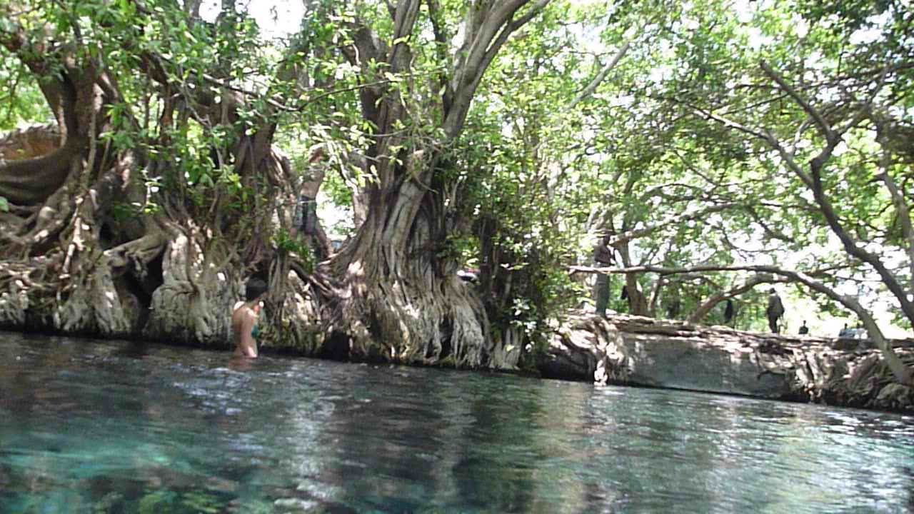 The Maji Moto Hot Springs Miti Overseas